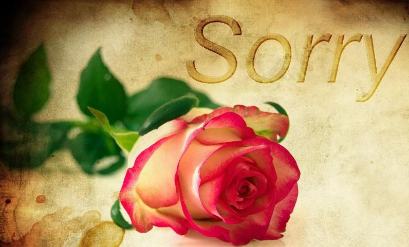 sorry2 - Scusa mamma